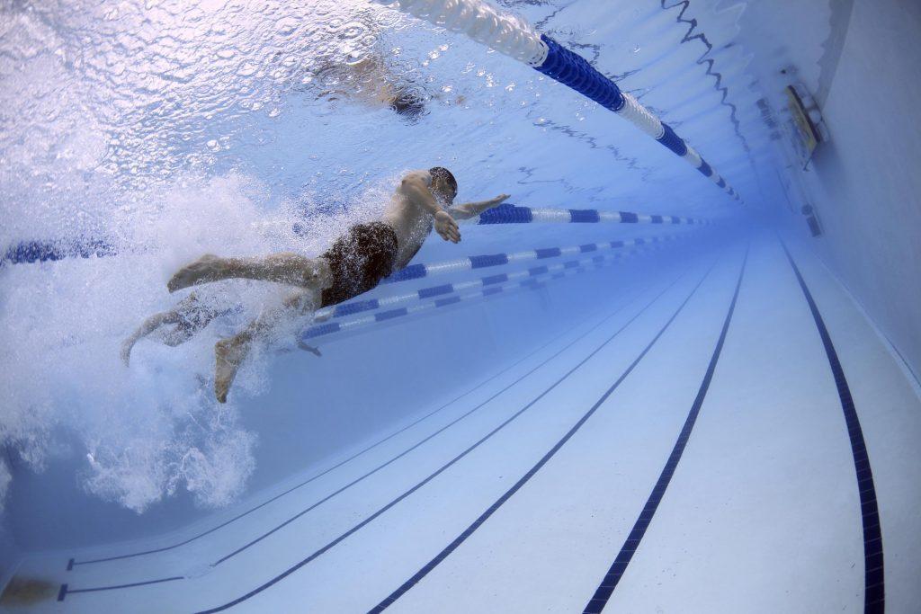 לימודי שחיה וסגנונות שחייה פרפר חזה וחתירה