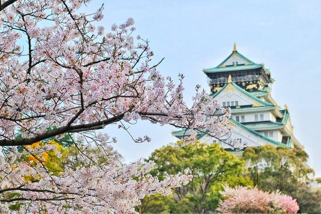 מיטב האטרקציות בטיול מאורגן ליפן
