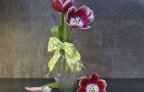 הפרח בגני: דימויי פרחים בתרבות ובאמנות